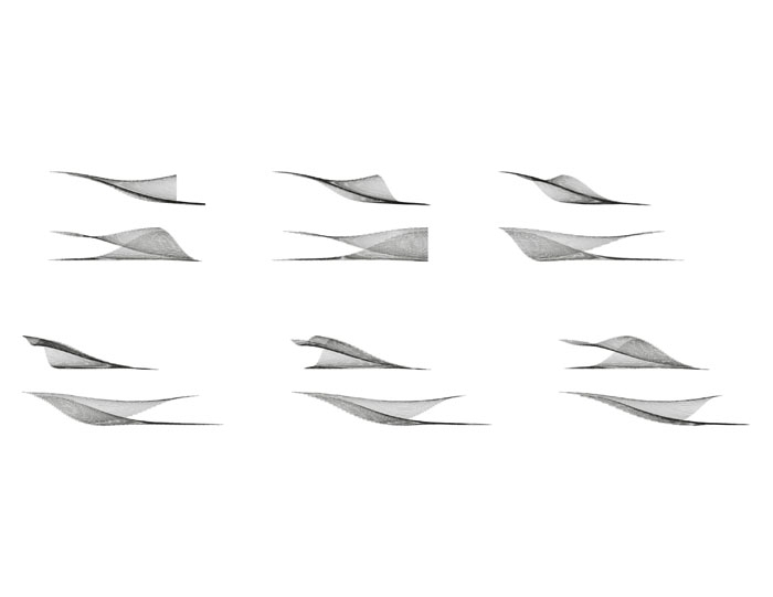 http://christina-nguyen.com/files/gimgs/th-9_6_Duckwork_Sections.jpg